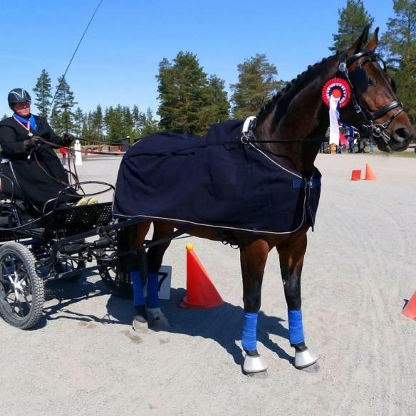 Kretsmester kjøring 2016 - Stine Samsonstuen og Stallknektens Doyou